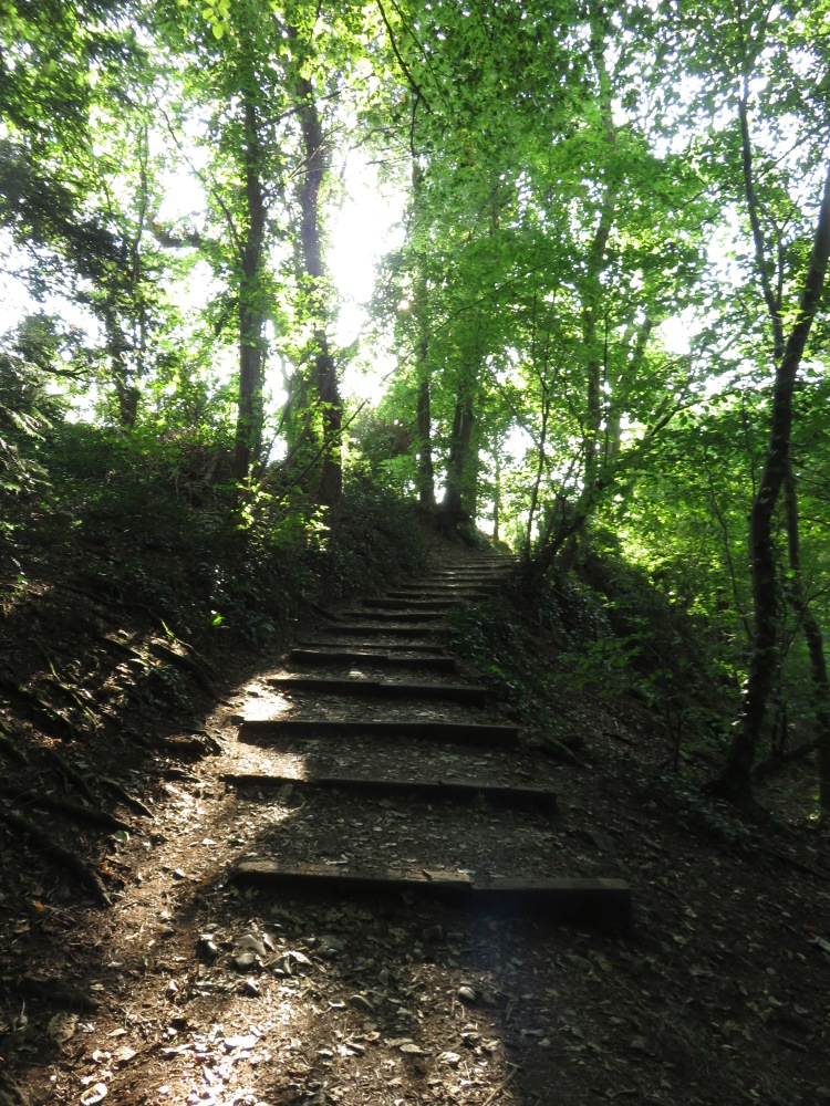 The path down from Kings Weston Hill