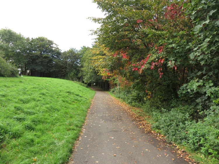 Autumn colours on the Malago Greenway