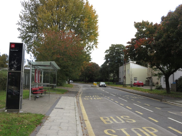 Autumnal trees on Novers Lane