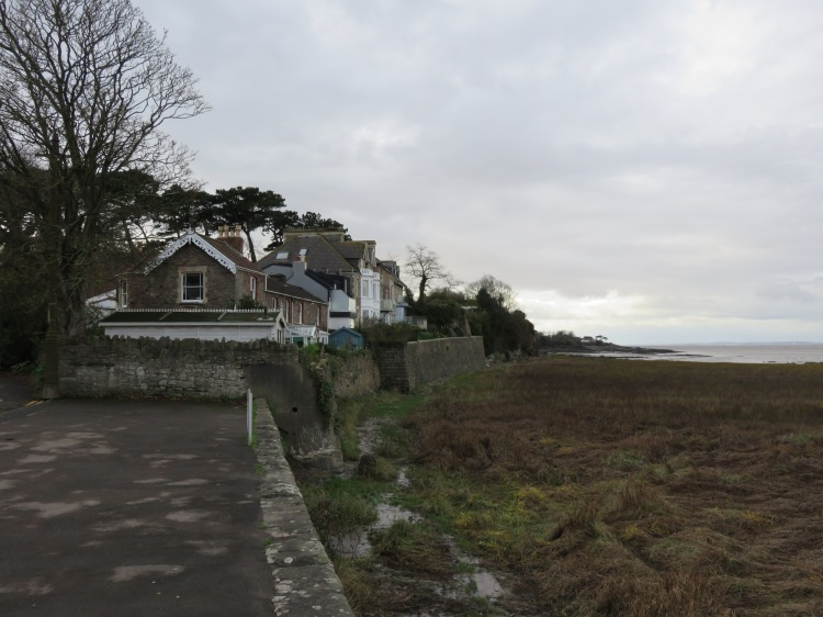 Houses on Beach Road West look out over the estuary