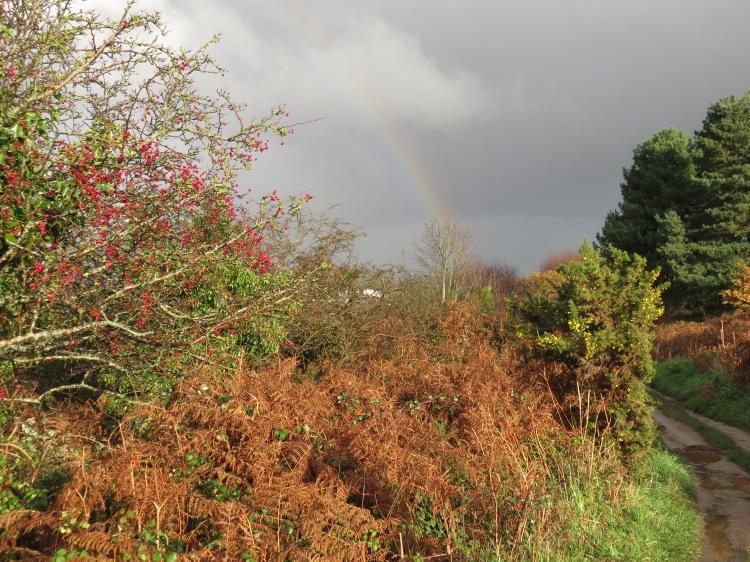 Autumn sun and a rainbow on the return journey
