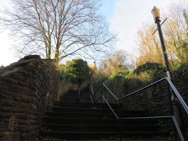 White Hart Steps, Clifton Wood