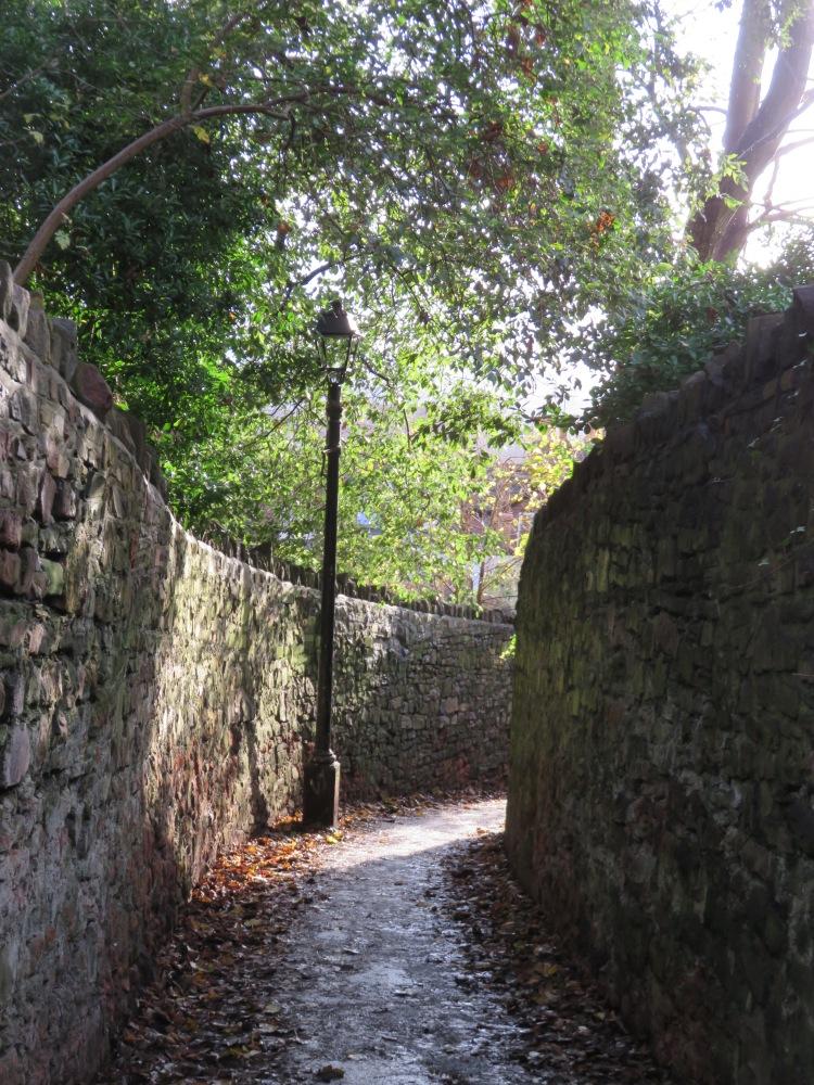 Polygon Lane, Clifton