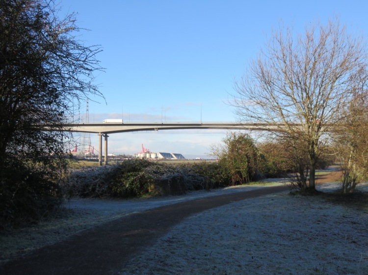 A frosty Lamplighter's Marsh