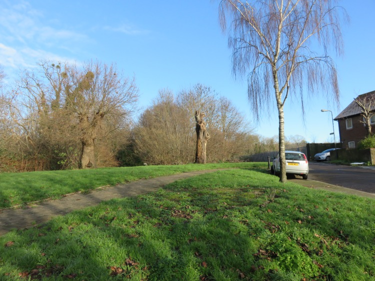 Climb to the footpath at Oaktree Court