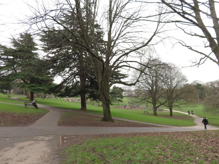 Entering Greville Smyth Park