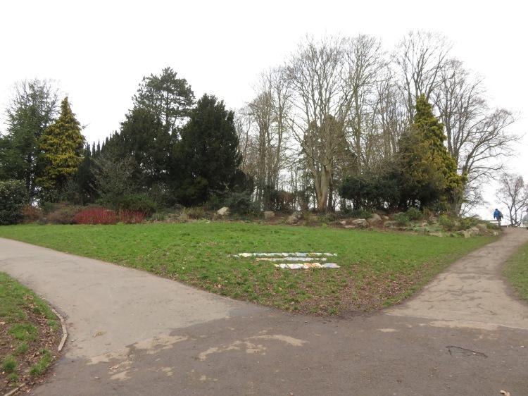 Greville Smyth Park shrubbery