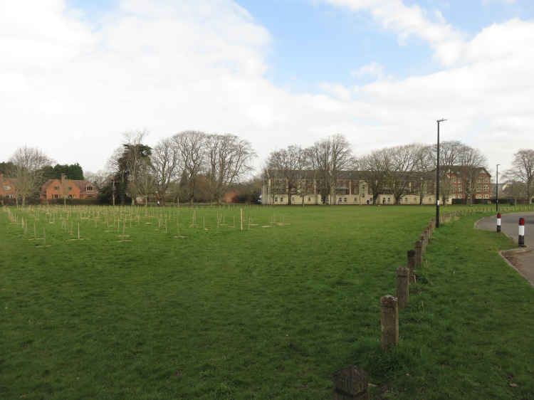 The green at Ham Green