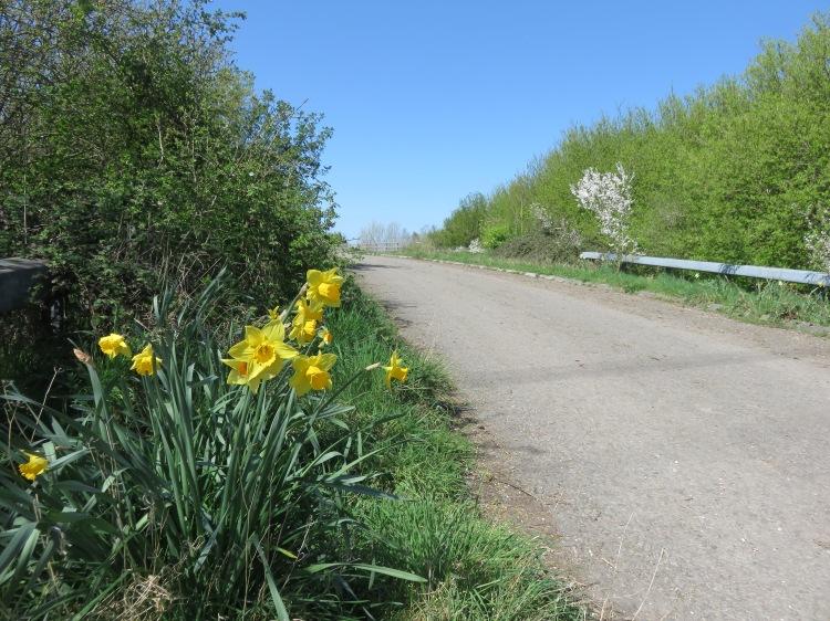 Approaching the M49 bridge on Moorhouse Lane