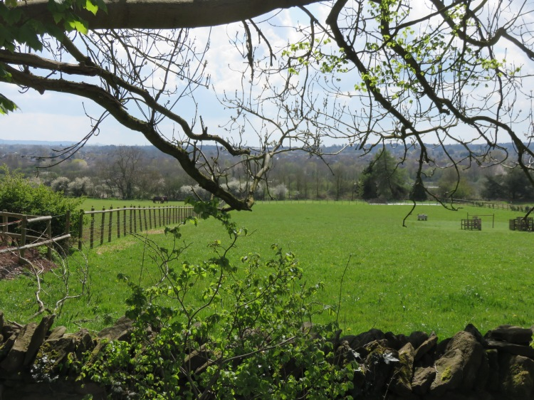 View from the top of Bury Hill