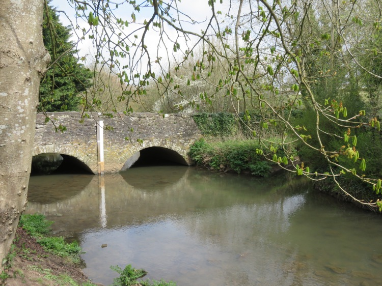 The bridge over the Frome at Down Road, seen from The Dingle