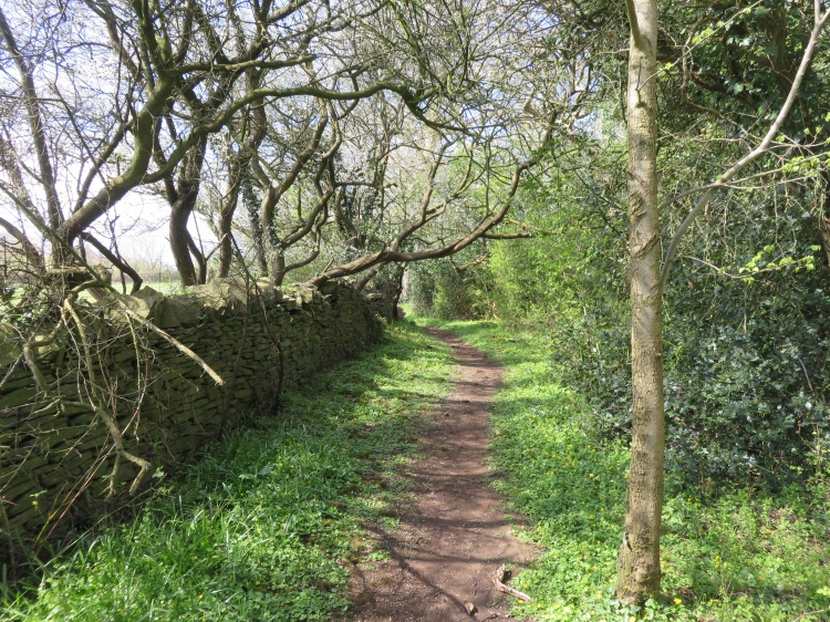 The footpath along the Bradley Brook valley
