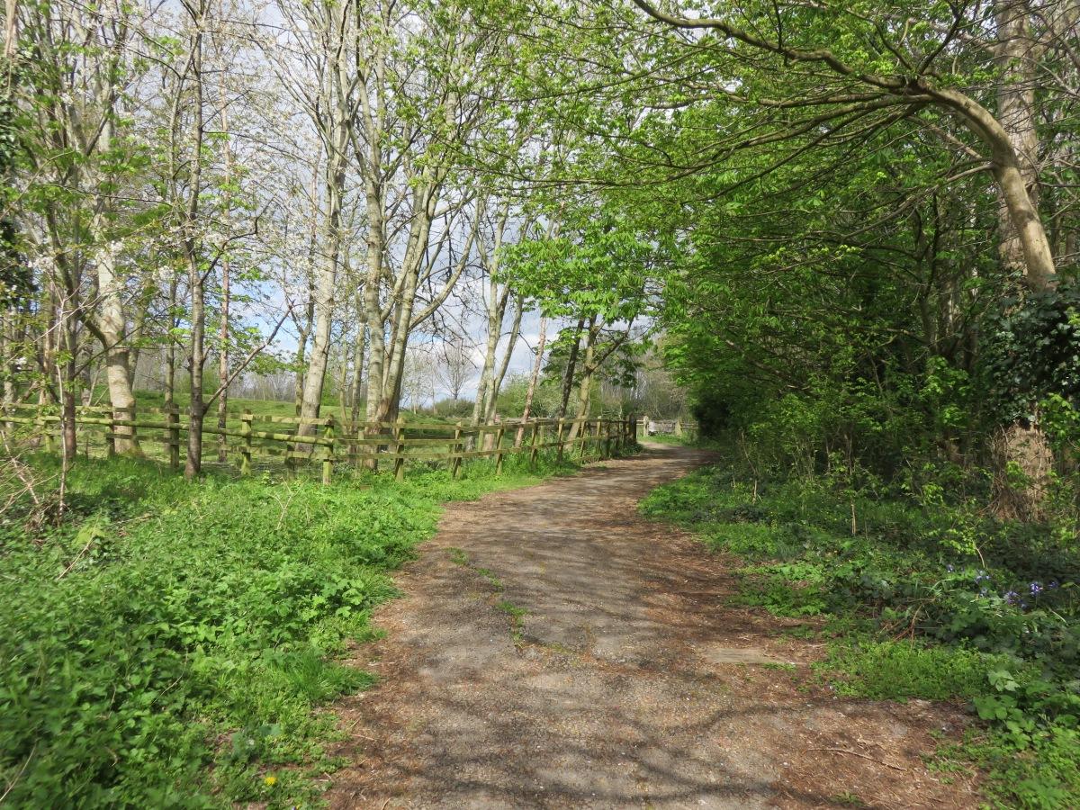 The footpath next to Lawrence Weston Community Farm