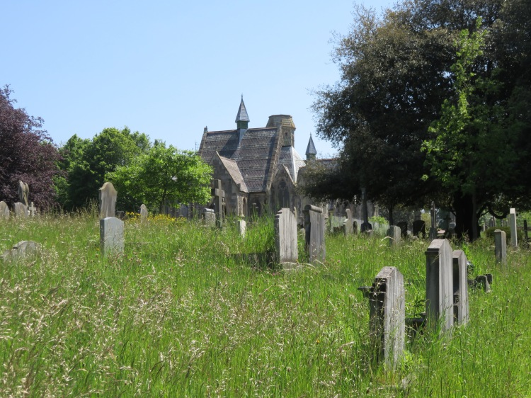 Spring growth in Greenbank Cemetery
