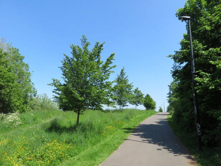 Entering Ridgeway Playing Fields